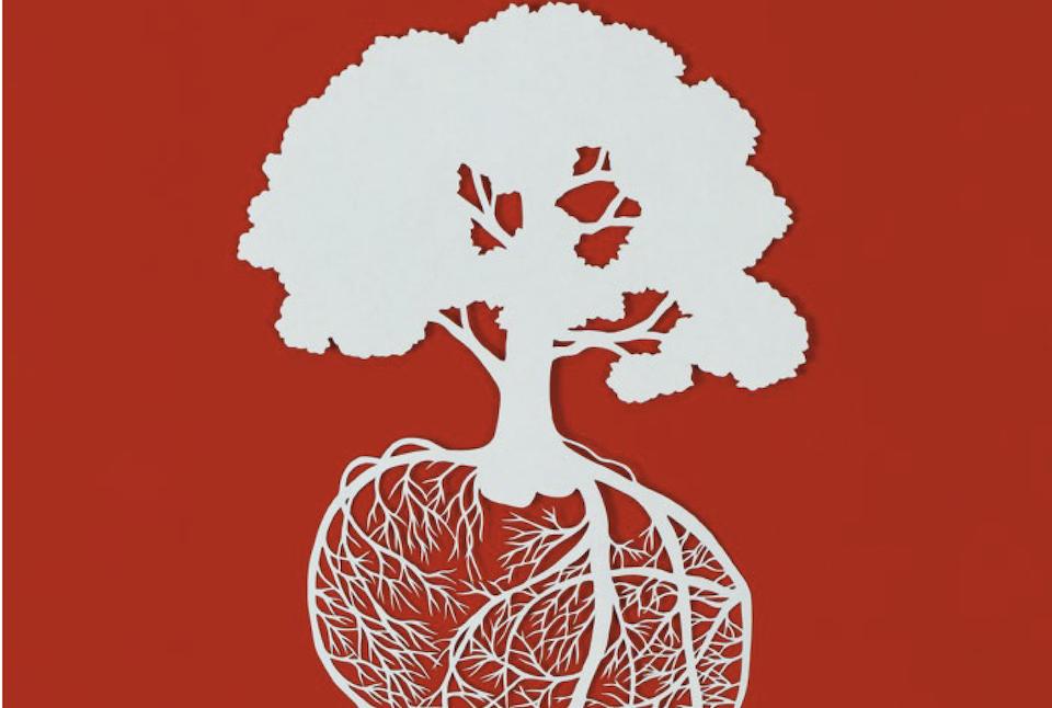 Smidt Heart Institute Report 2021